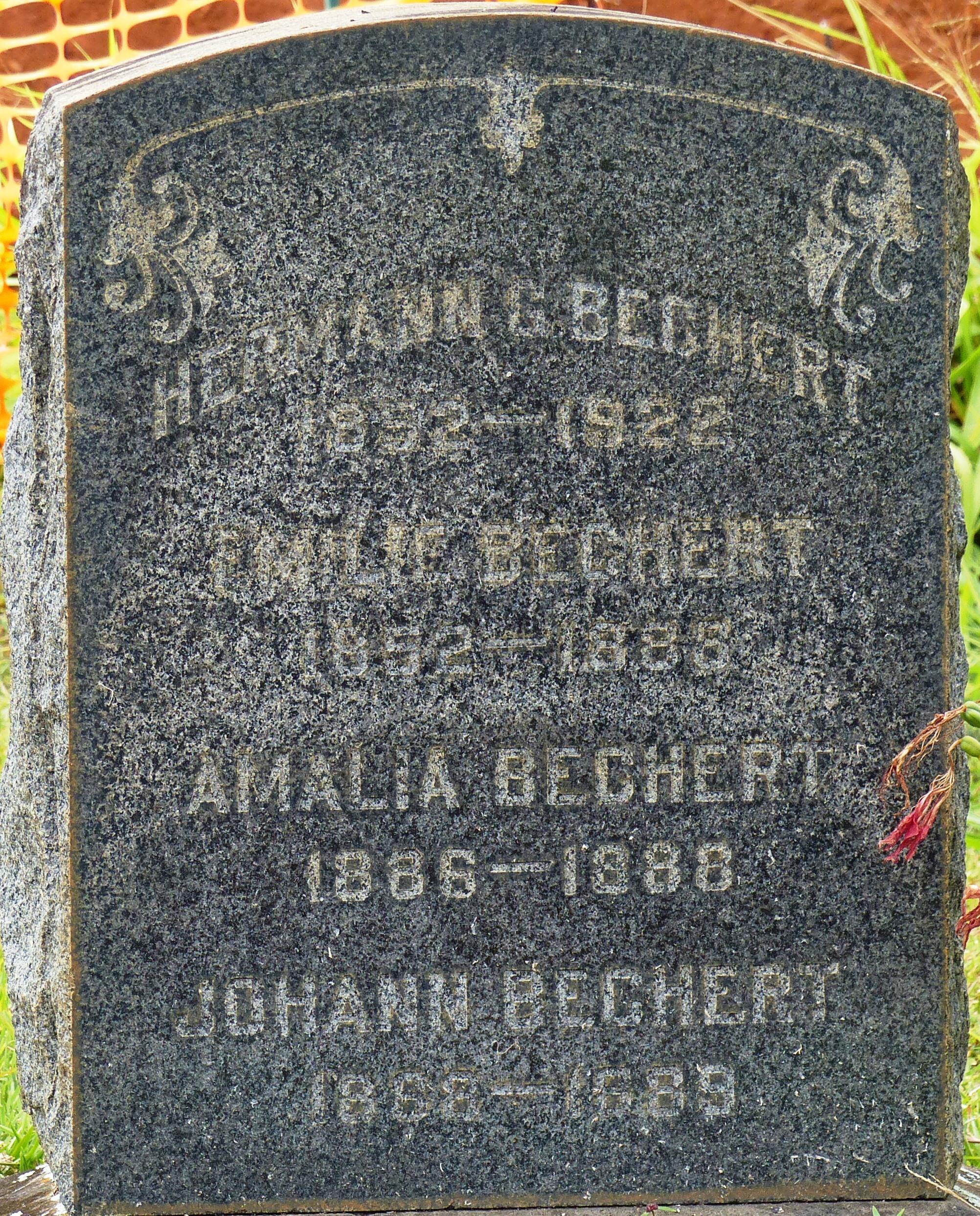Johann Carl Bechert