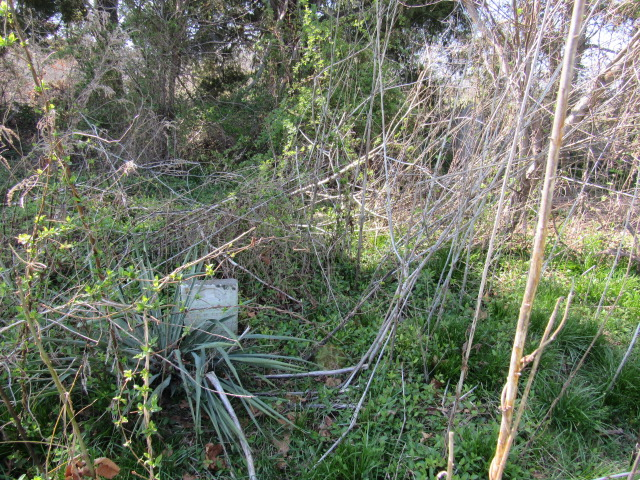 George Little Family Graveyard