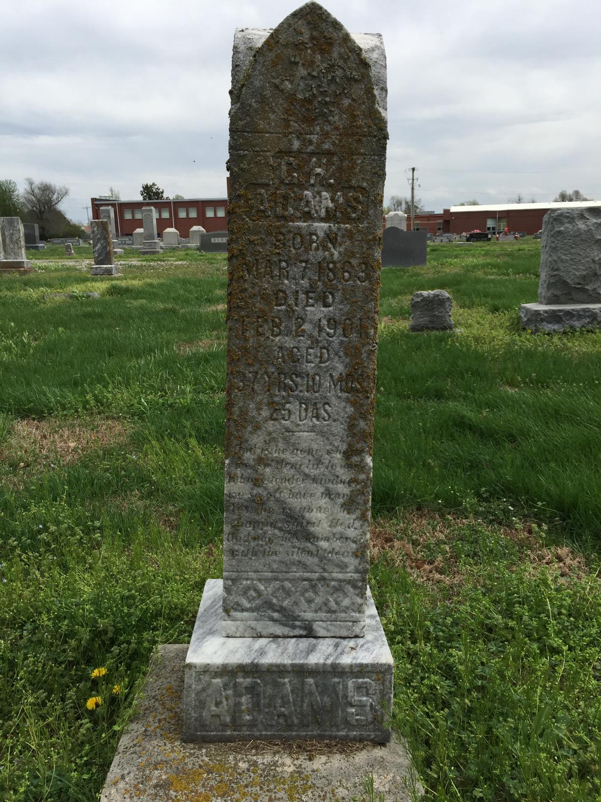 George Henry Adams