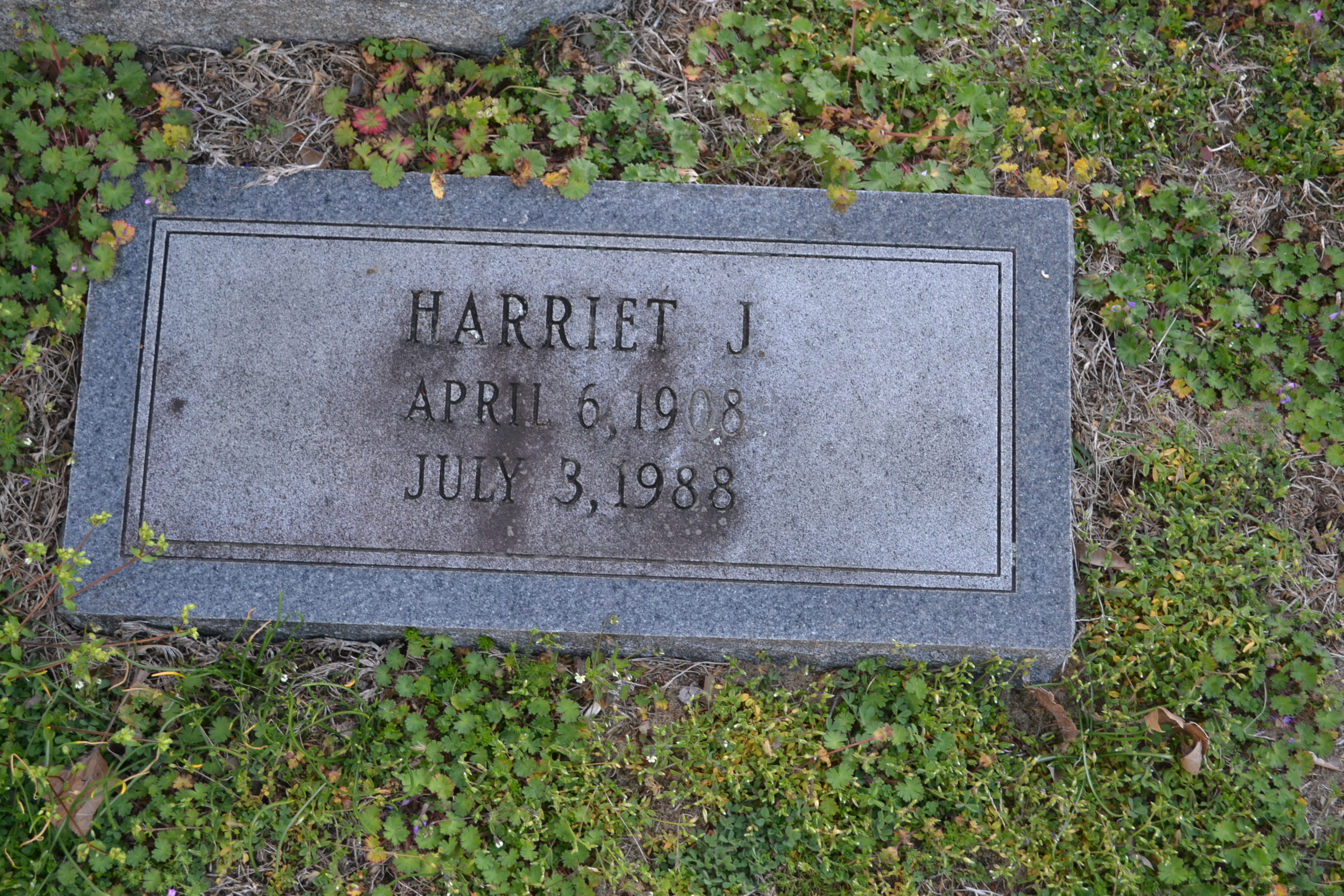 Harriett Elizabeth <i>Johnson</i> Balderson
