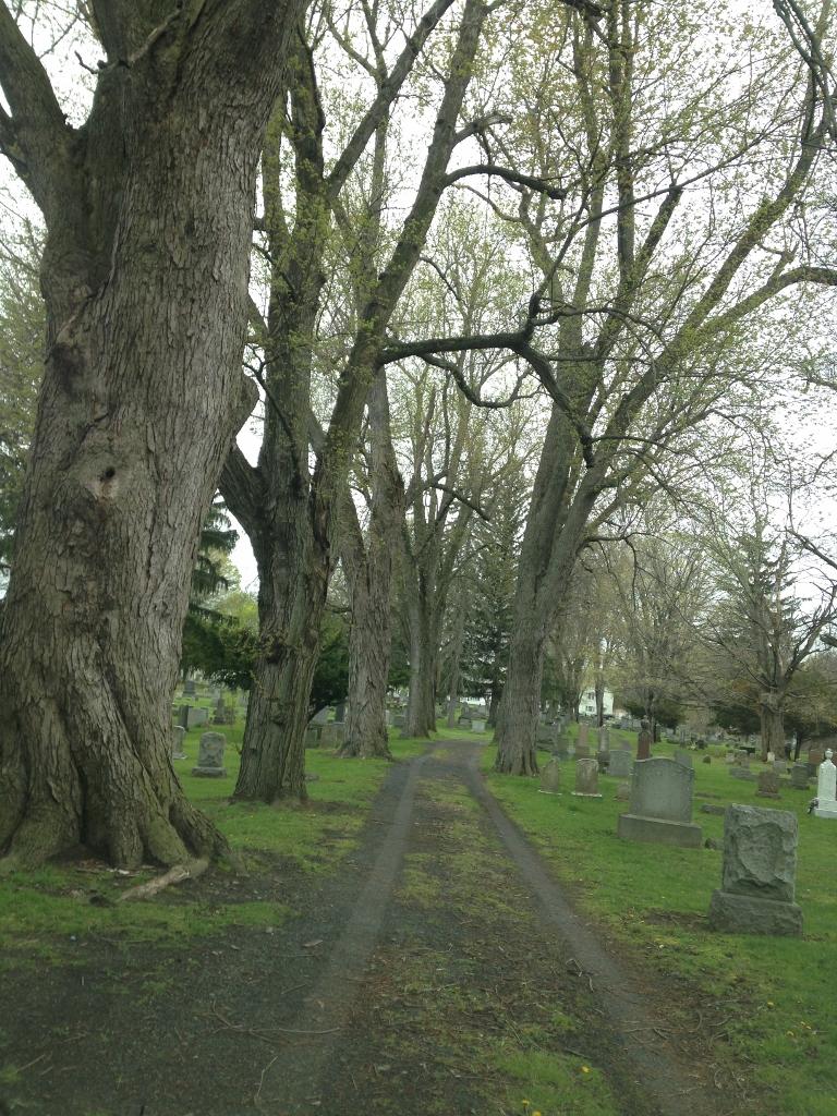 Waterford Rural Cemetery