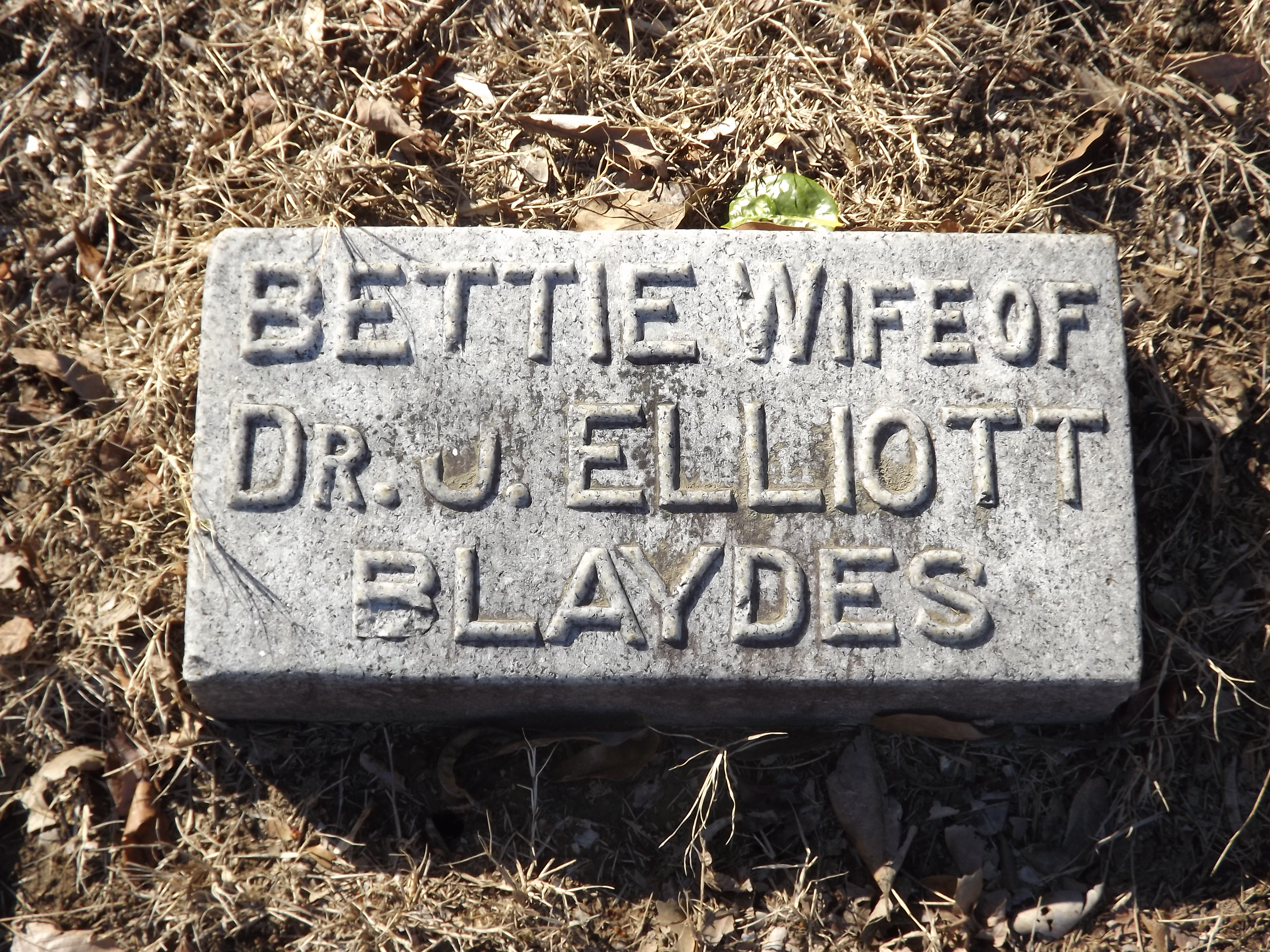 Malinda Elizabeth Bettie <i>Payne</i> Blaydes
