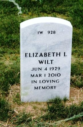 Elizabeth L Wilt