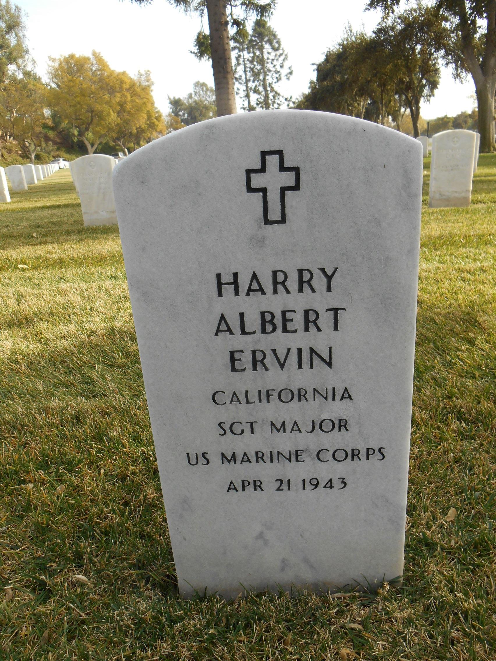 Harry Albert Ervin