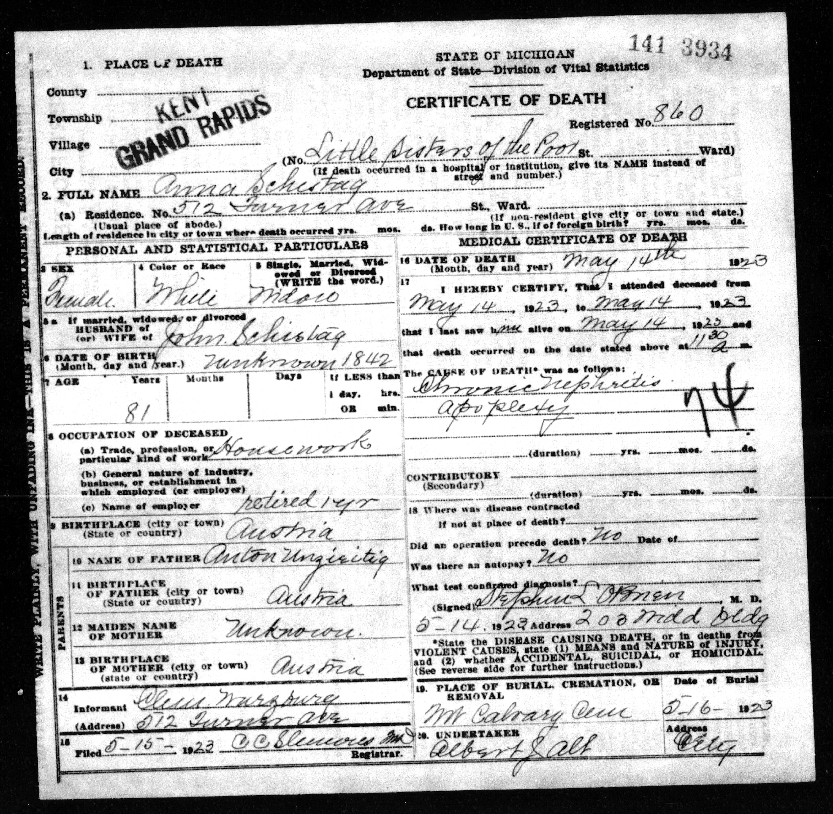 Anna schestag 1843 1923 find a grave memorial death certificate of anna schestag died 14 may 1923 at the little sisters of the poor grand rapids kent county michigan death certificate found at the xflitez Image collections