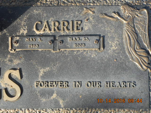 Carrie <i>Solly</i> Rees
