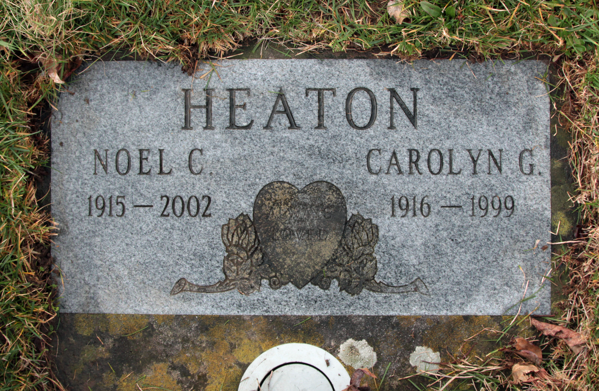 Carolyn G <i>Hendrix</i> Heaton