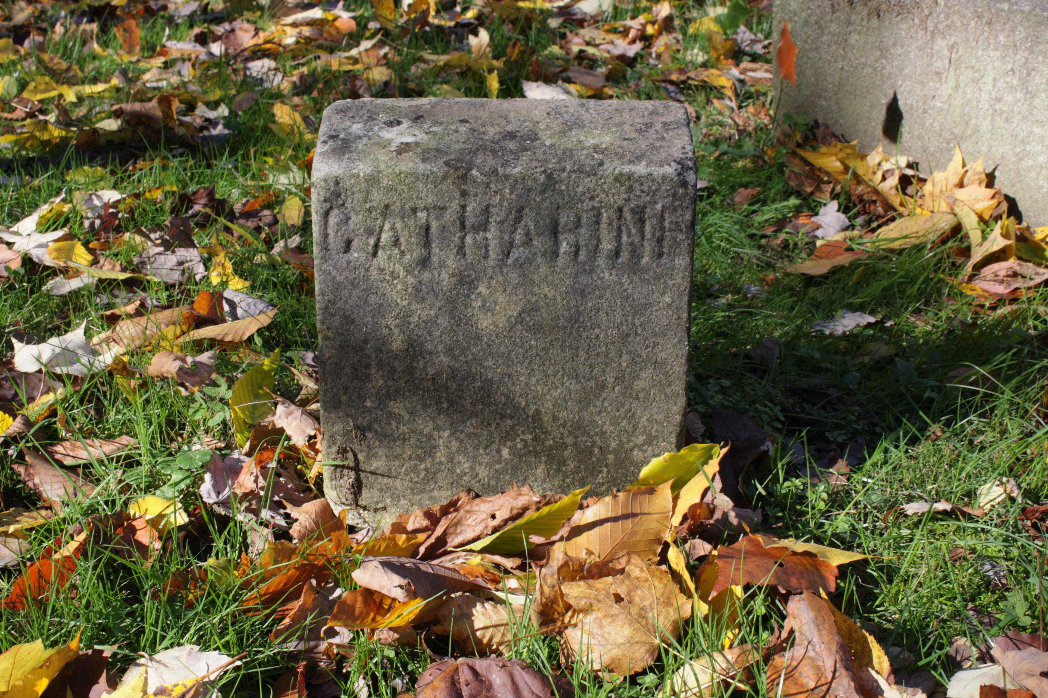 Catherine Maple