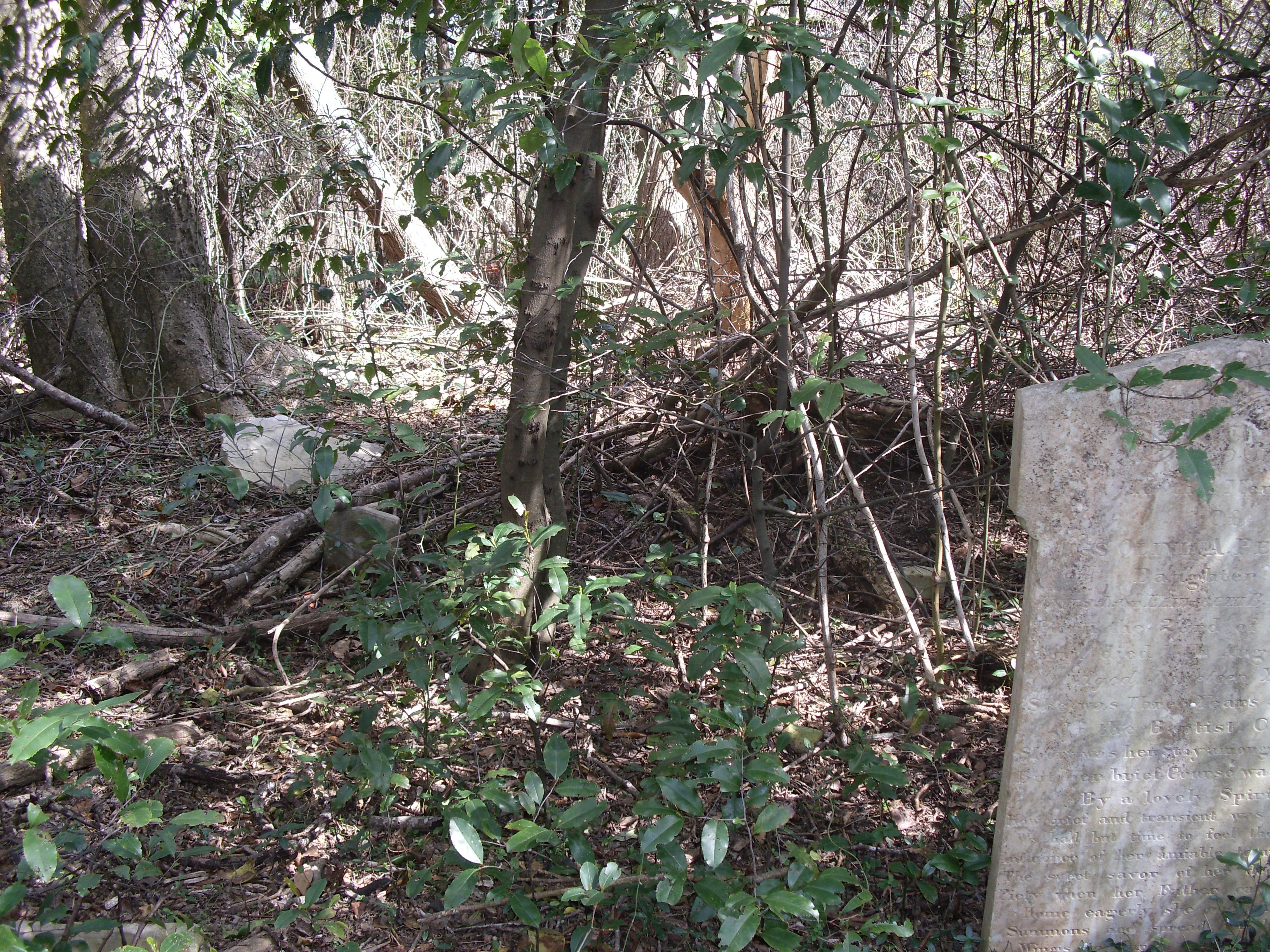 Blackwell Burch Cemetery