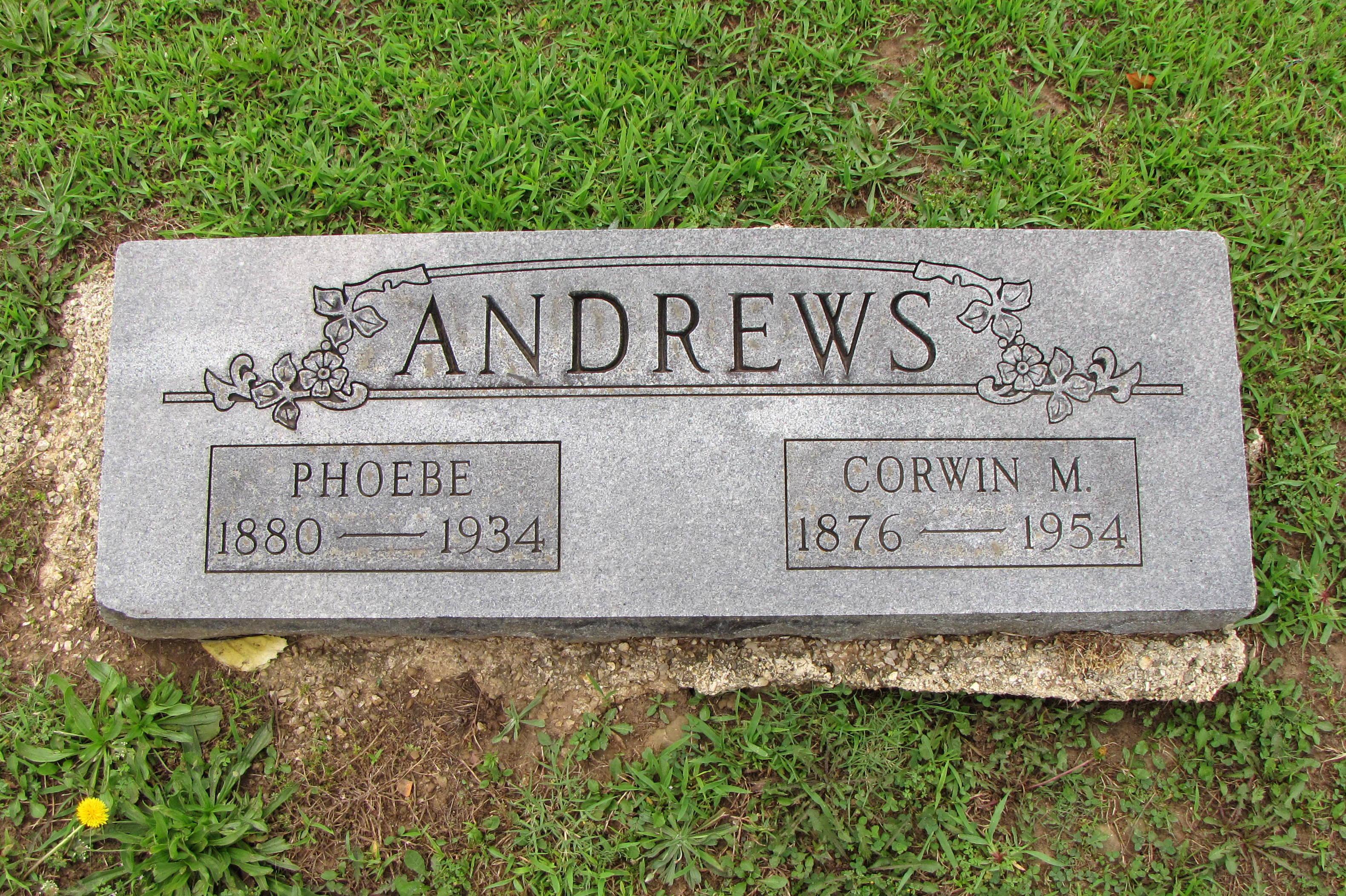 Phoebe <i>Owen</i> Andrews
