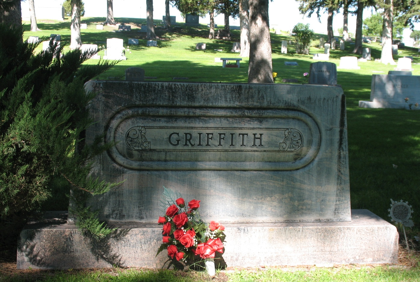 Nellie <i>Snyder</i> Griffith