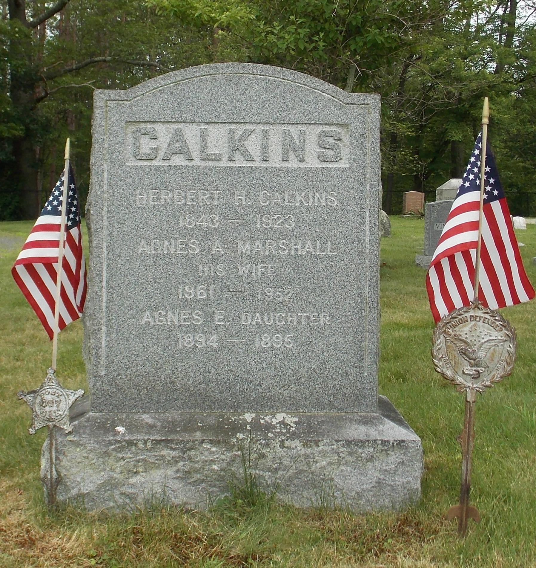 Agnes A <i>Marshall</i> Calkins