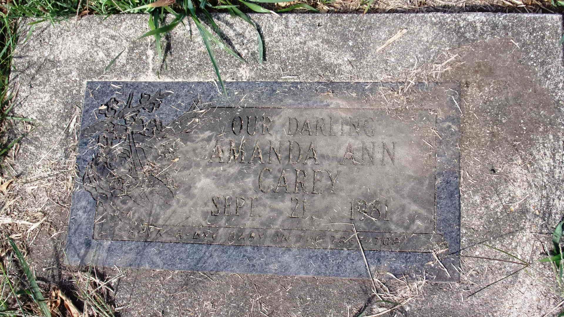 Amanda Ann Carey
