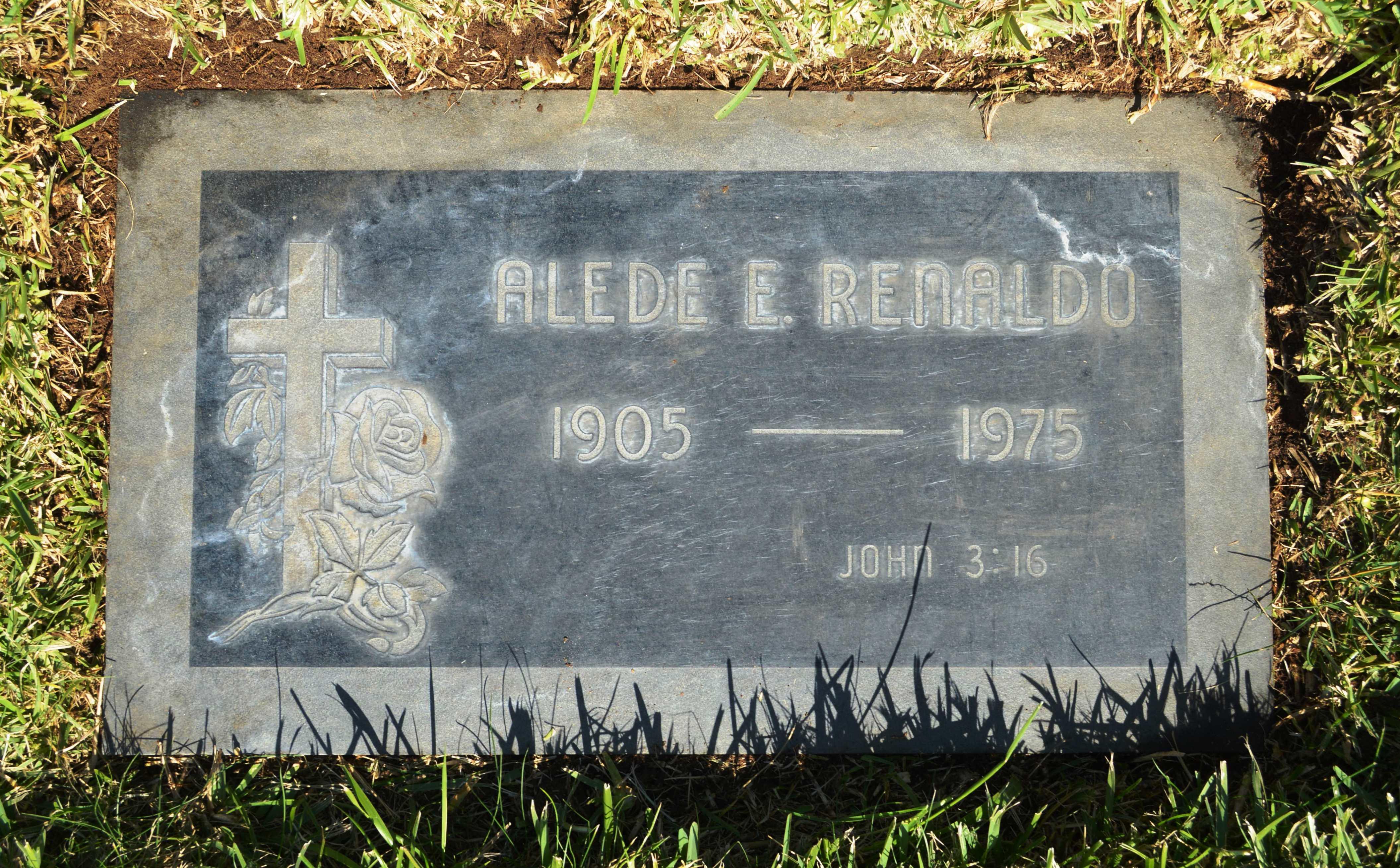 Alede E. <i>Steinstra</i> Renaldo