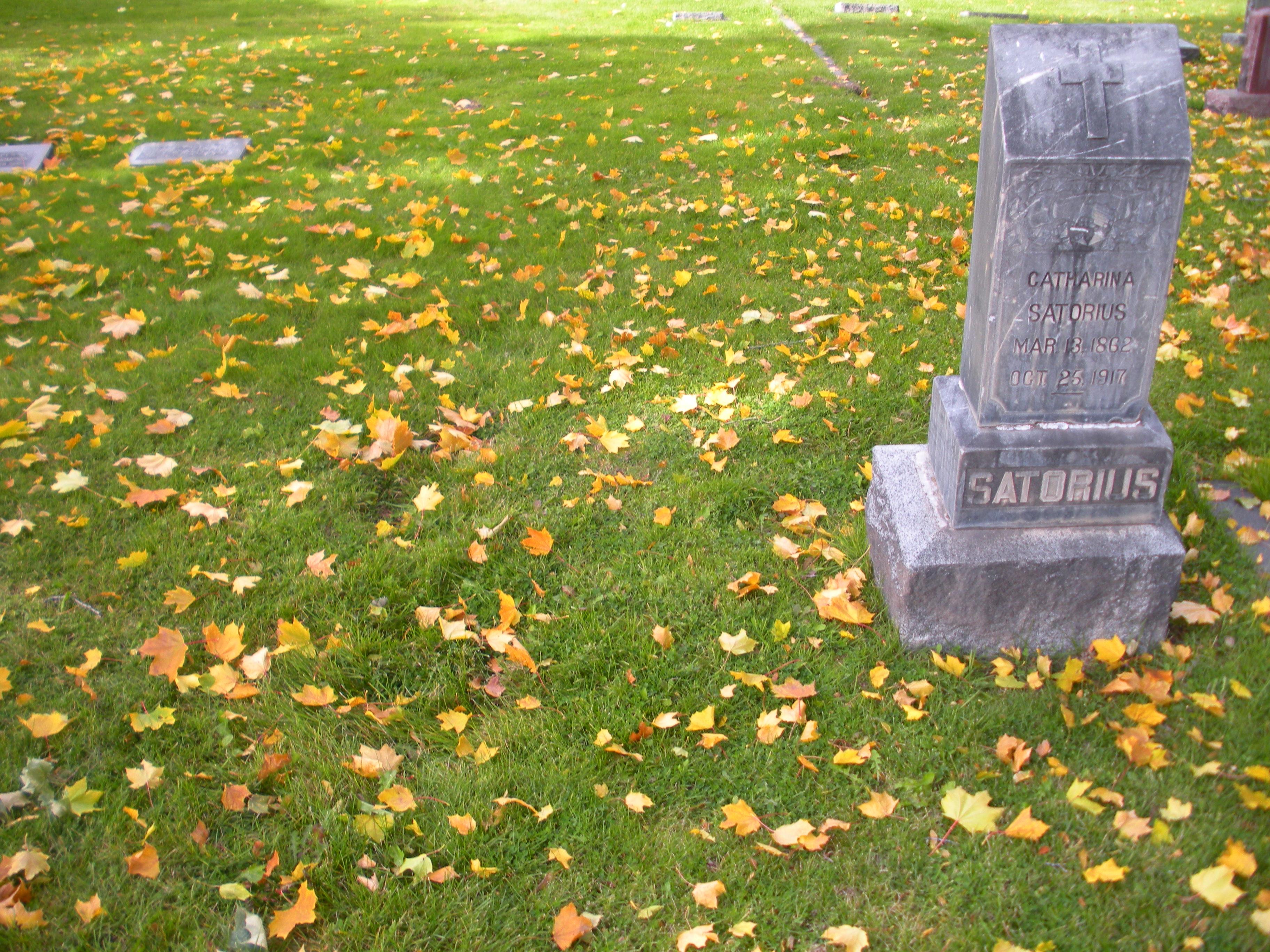 William Satorius 1861 1931 Find A Grave Memorial