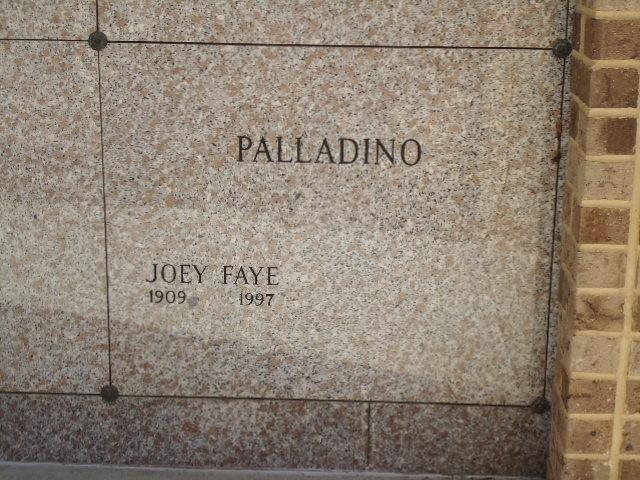 Joey Faye