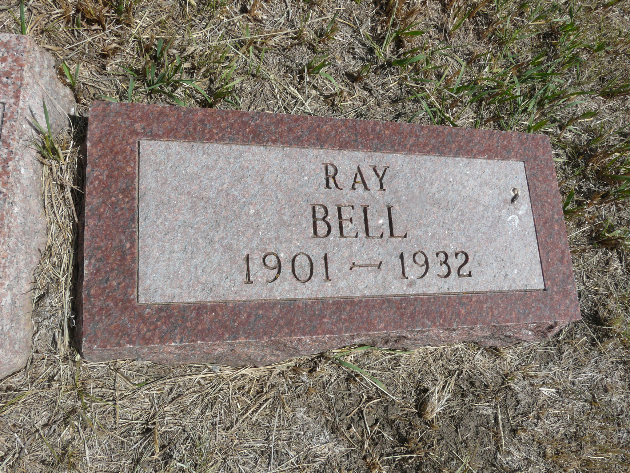 Ray Bell