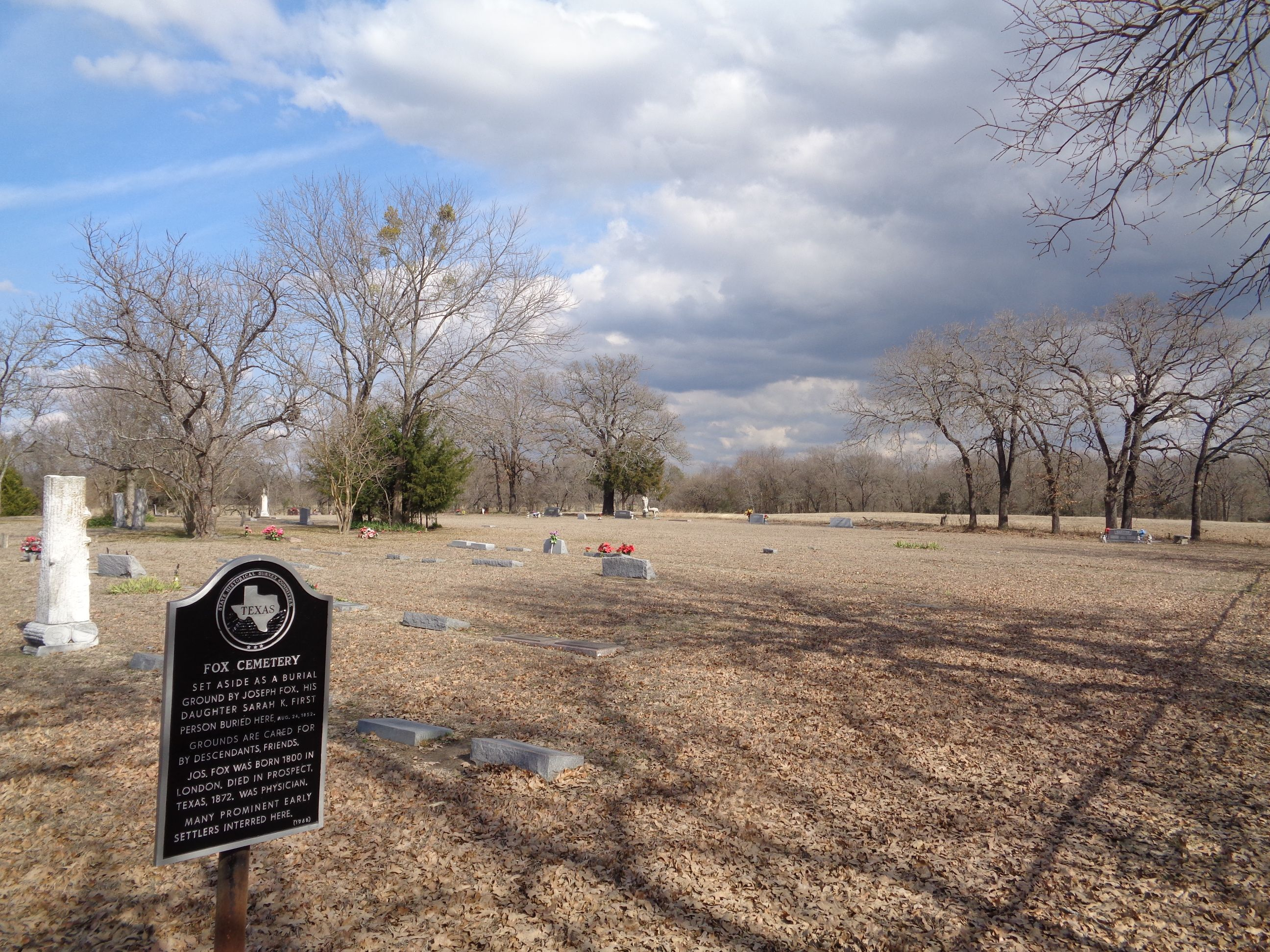 Fox Cemetery in Rand, Texas - Find A Grave Cemetery