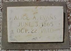 Alice <I>Trafton</I> Evans