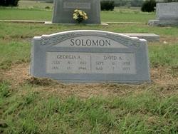 David Andrew Solomon
