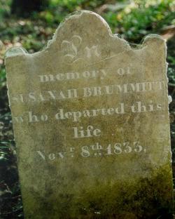 Susannah Comfort <I>Davis</I> Brummitt