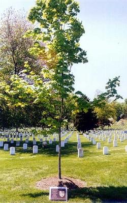 Americal Division Memorial