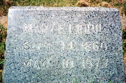 Mary E. Liddil