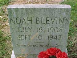 Noah Blevins
