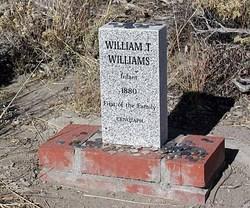 William T. Williams