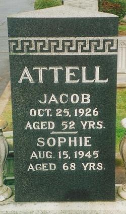 Jacob Attell