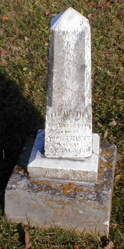 Elizabeth Virginia <I>Colvin</I> Defibaugh