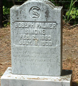 Joseph Palmer Simons