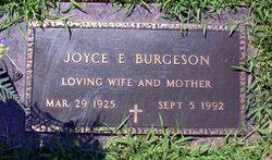 Joyce E. Burgeson