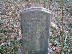 Elizabeth 'Eliza' Jane <I>Wheeler</I> Queener