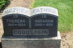 Abraham Goodstein