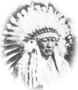 Chief Thunderbird