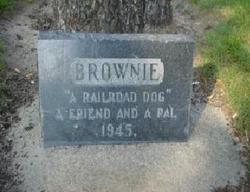 """The Railroaders' Dog"" Brownie"