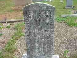 Rev Isaac Newton Rich
