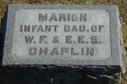 Marion Chaplin