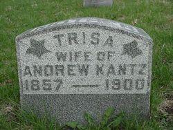 Trissa <I>Davison</I> Kantz