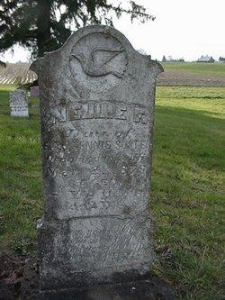Nellie F. Suiter