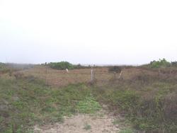 Caplen Cemetery