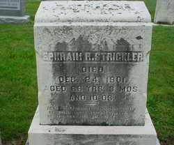 Ephraim R Strickler