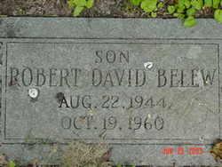 Robert David Belew