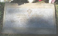 Melvin F. Borges