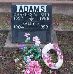 Charles Worden Adams
