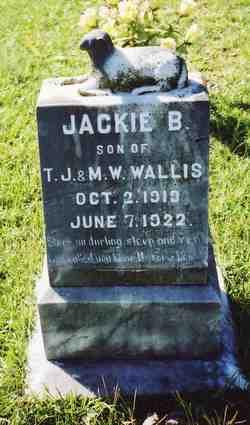 Jackie B. Wallis