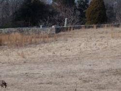 Cureton Cemetery