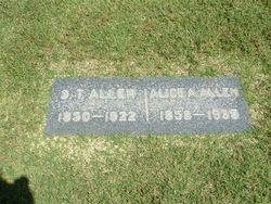 Alice Ann Allen