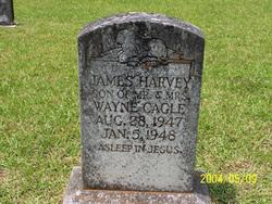 James Harvey Cagle